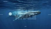 クジラたちの姿やその鳴き声の視聴も可能! 独特なスクロール演出も面白い Save whales